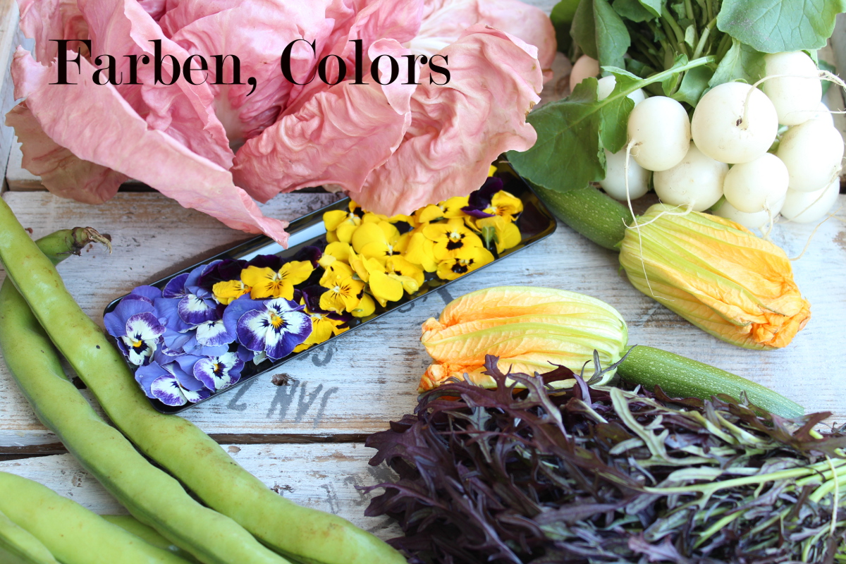 Salads – playing with colors