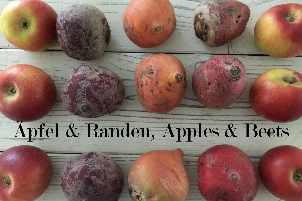 Randen, Äpfel und Johannisbeeren ein buntes Trio