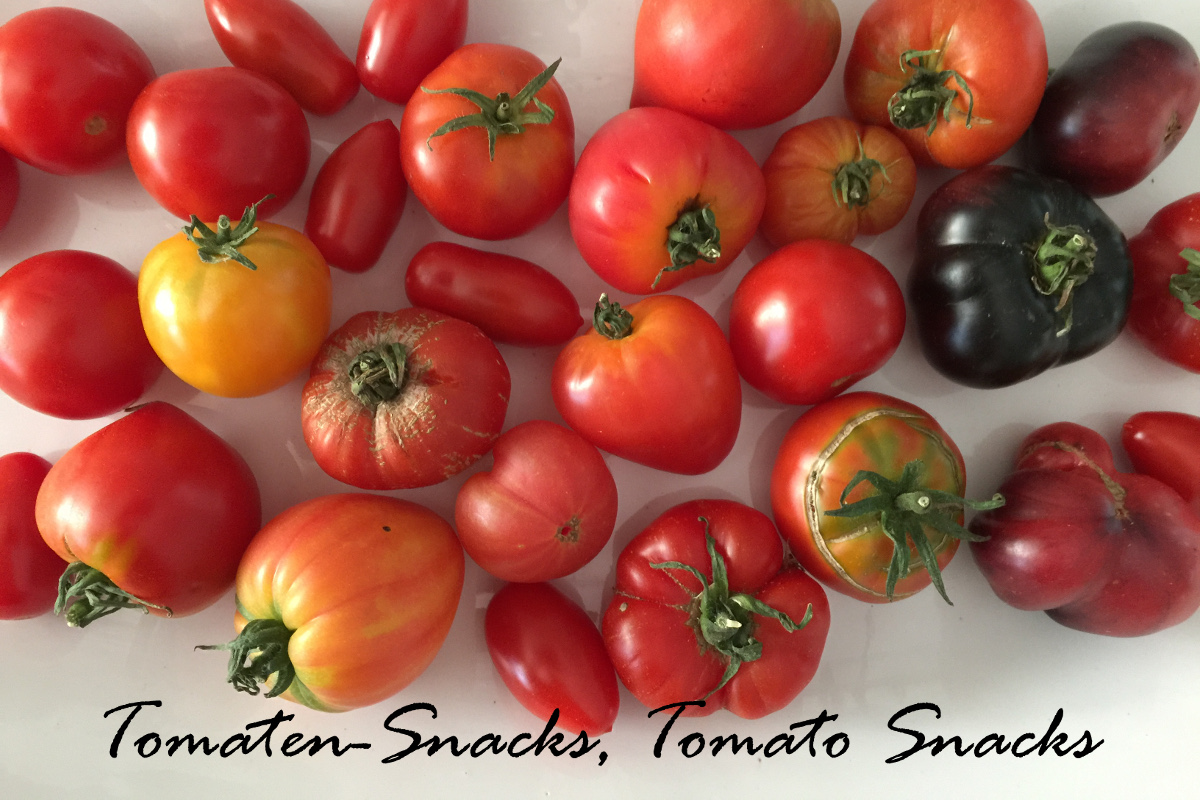Tomato snacks, simple, delicious and easy