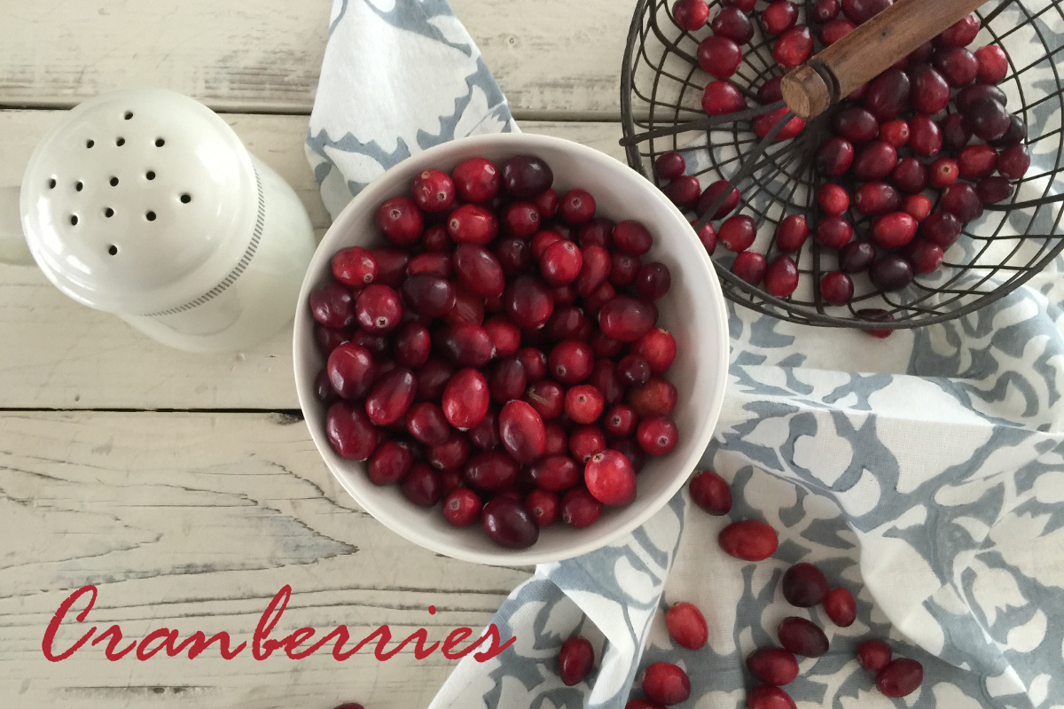 Cranberries, bright and red like garnet stones