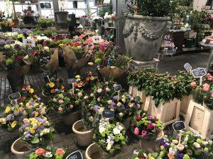 Chef's Handyman, Amsterdam, Flower Market